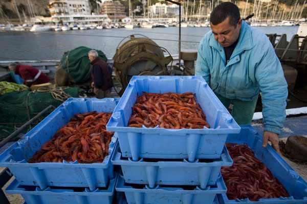 Pescadores en Arenys de Mar