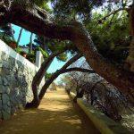 Camino de Ronda de Platja d'Aro