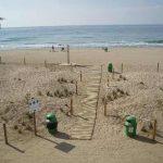 Dunas de las playas de Cabrera de Mar