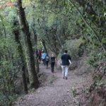 Turismo Activo en l'Espluga de Francolí, Costa Daurada