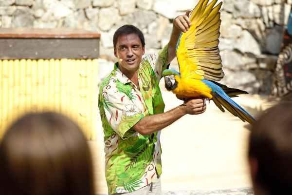 Espectáculo Aves del Paraíso en la Polynesia de Port Aventura (Salou, Costa Daurada)