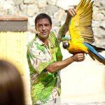 Área temática de la Polynesia de Port Aventura (Salou), Espectáculo Aves del Paraíso