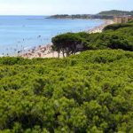 Playas de La Pineda en la Costa Daurada