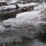 Río en Camprodon