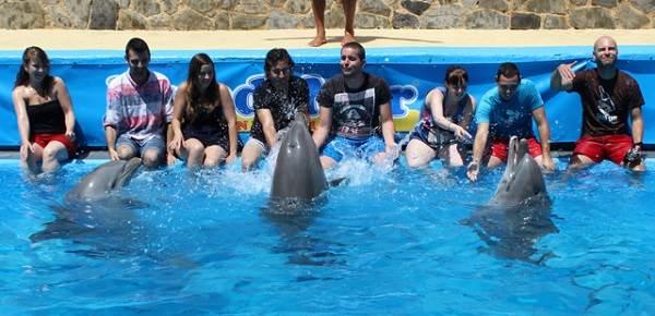 Actividades con delfines en Mundomar