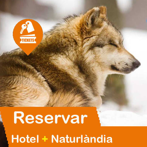 Hotel + Entradas Naturlàndia Andorra