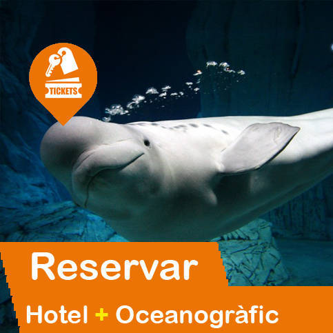 Hotel + Entradas Oceanogràfic Valencia
