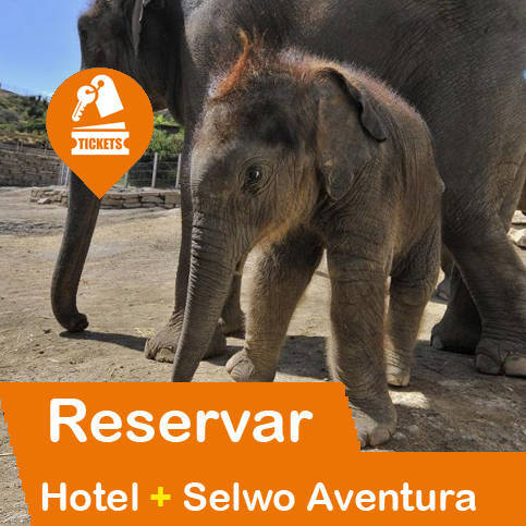 Hotel + Entradas Selwo Aventura