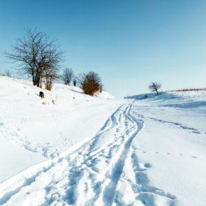 Recorre Andorra en Moto de Nieve. ¿Te lo vas a perder?