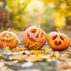 Vive lo mejor de Halloween 2021 en Port Aventura y Parque Warner